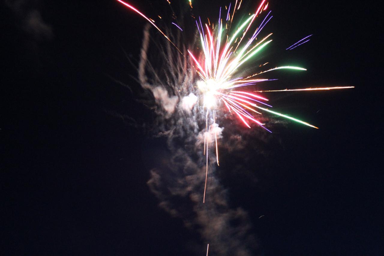 feu-2012-018.jpg